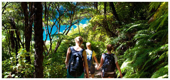 Walk or Bike the Queen Charlotte Track <br>with Beachcomber Cruises
